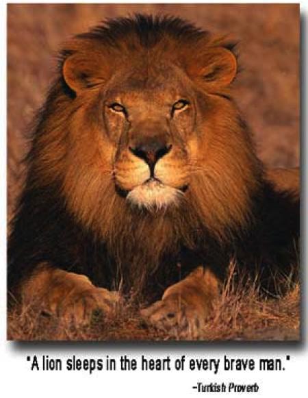 19brave_lion